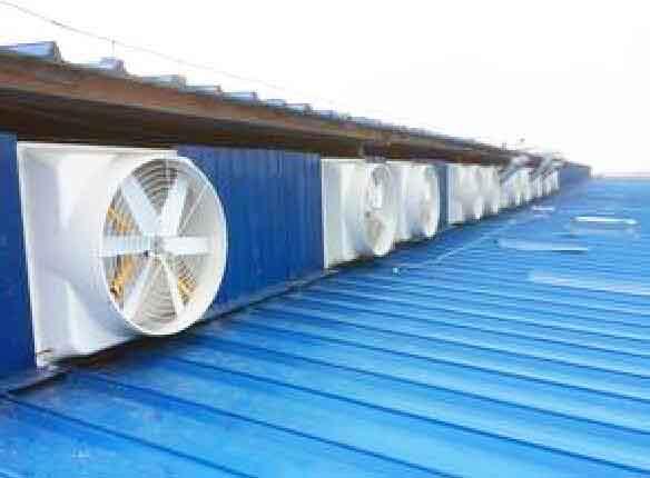 屋顶风机分类|屋顶风机批发网点|厂家制造