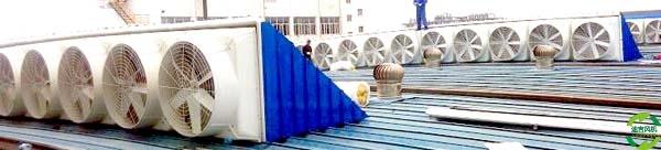 屋顶抽风机_屋顶工业排风扇_屋顶排烟风机_屋顶