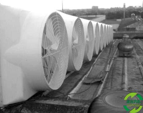 扬中水帘风机,抽风扇,屋顶风机配12级电机