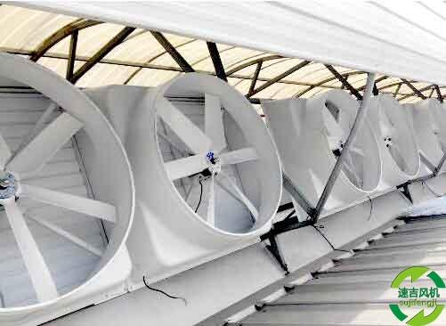 玻璃钢负压风机_屋顶排风扇的使用及保养
