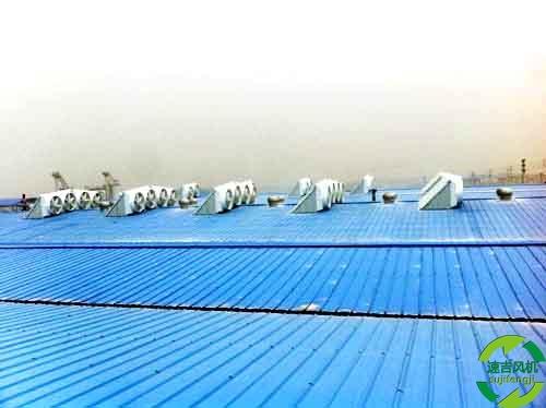 胶州工业排风扇,屋顶风机,排风扇